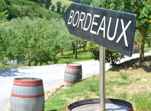 Our top 5 things to do in Bordeaux with the kids