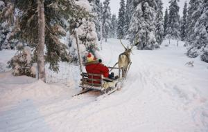 5 things to do in Lapland - besides visit Santa