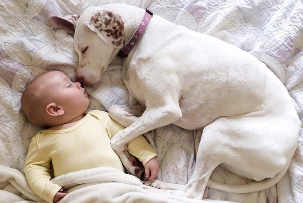 this mum shares adorable pictures of her baby napping with