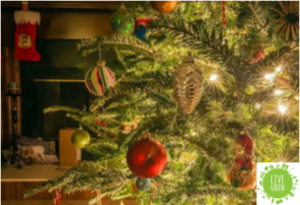 Top tips on recycling and saving money this Christmas